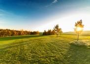 Golf Alfrédov
